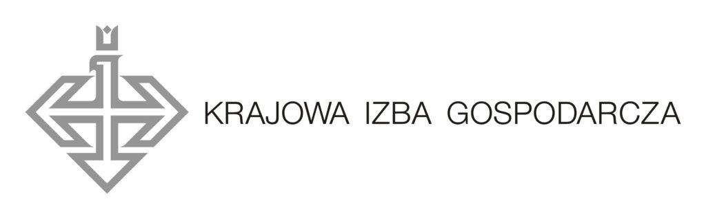 Program Polskie Mosty Technologiczne: KIG